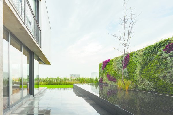 The rear patio features a living wall. Photo courtesy of JSa.