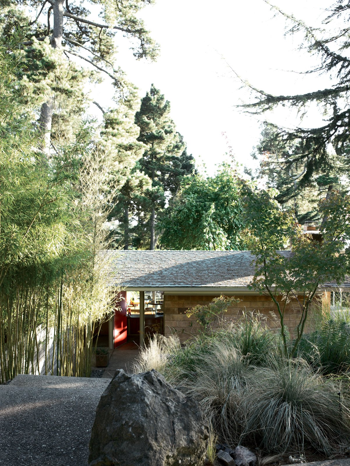 Exterior, House Building Type, Shingles Roof Material, and Concrete Siding Material A stony walk and a line of bamboo, original to the property, direct visitors to the entryway of the Pfeiffers' modest 1956 slice of heaven.  Photo 1 of 9 in Oakland Aesthetics