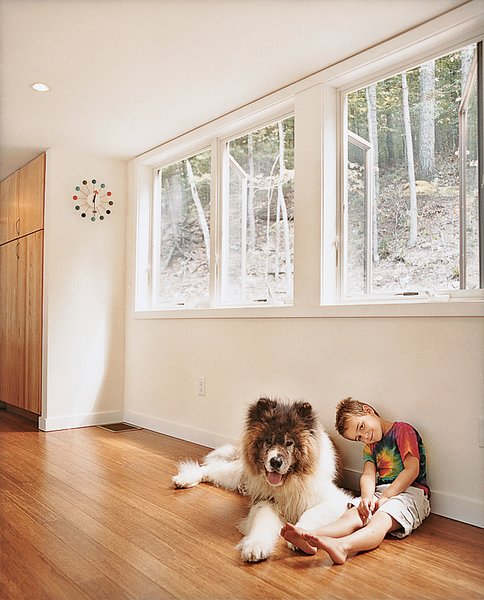 Living Room and Medium Hardwood Floor Keeping the home cozy in winter is as easy as snuggling up near the Rais stove or the fluffy pooch.  Photo 7 of 25 in Leap Into the Year of the Dog With These 25 Pups in the Modern World from Take Me Home