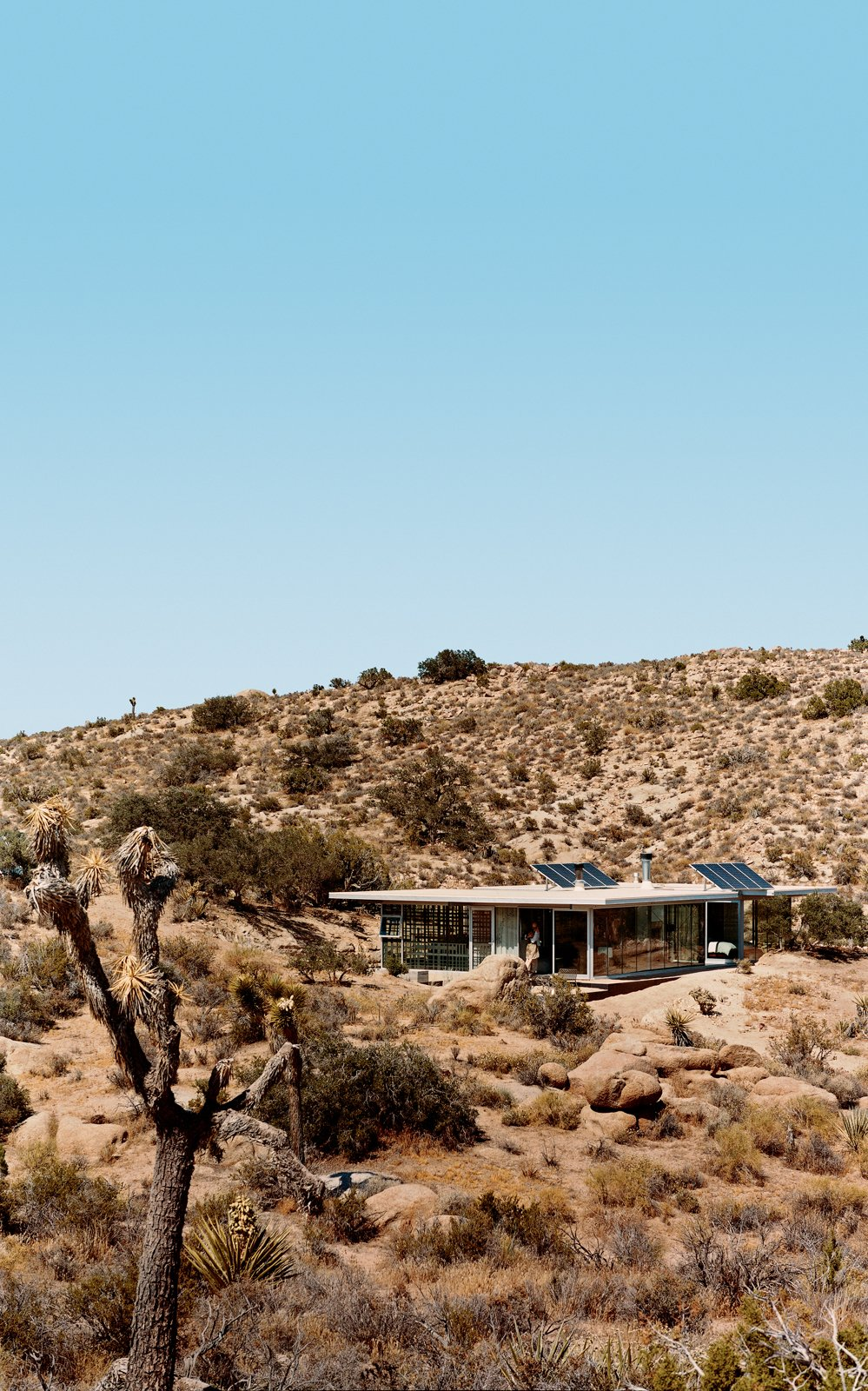 Exterior, House Building Type, and Green Roof Material Solar panels catch the sun's energy; wide expanses of open doors and windows provide cross-ventilation; and strategic overhangs shade against the desert's endless heat.  Photo 8 of 10 in 5 Hot Tips to Remember When Planning Your Desert Prefab from iT House, Joshua Tree