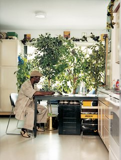 All Aboard - Photo 6 of 8 - Ernest Gladney reads alone at a worktable in his bedroom. Tall houseplants give Gladney a shade of privacy against the passing cars on Clybourn Avenue.