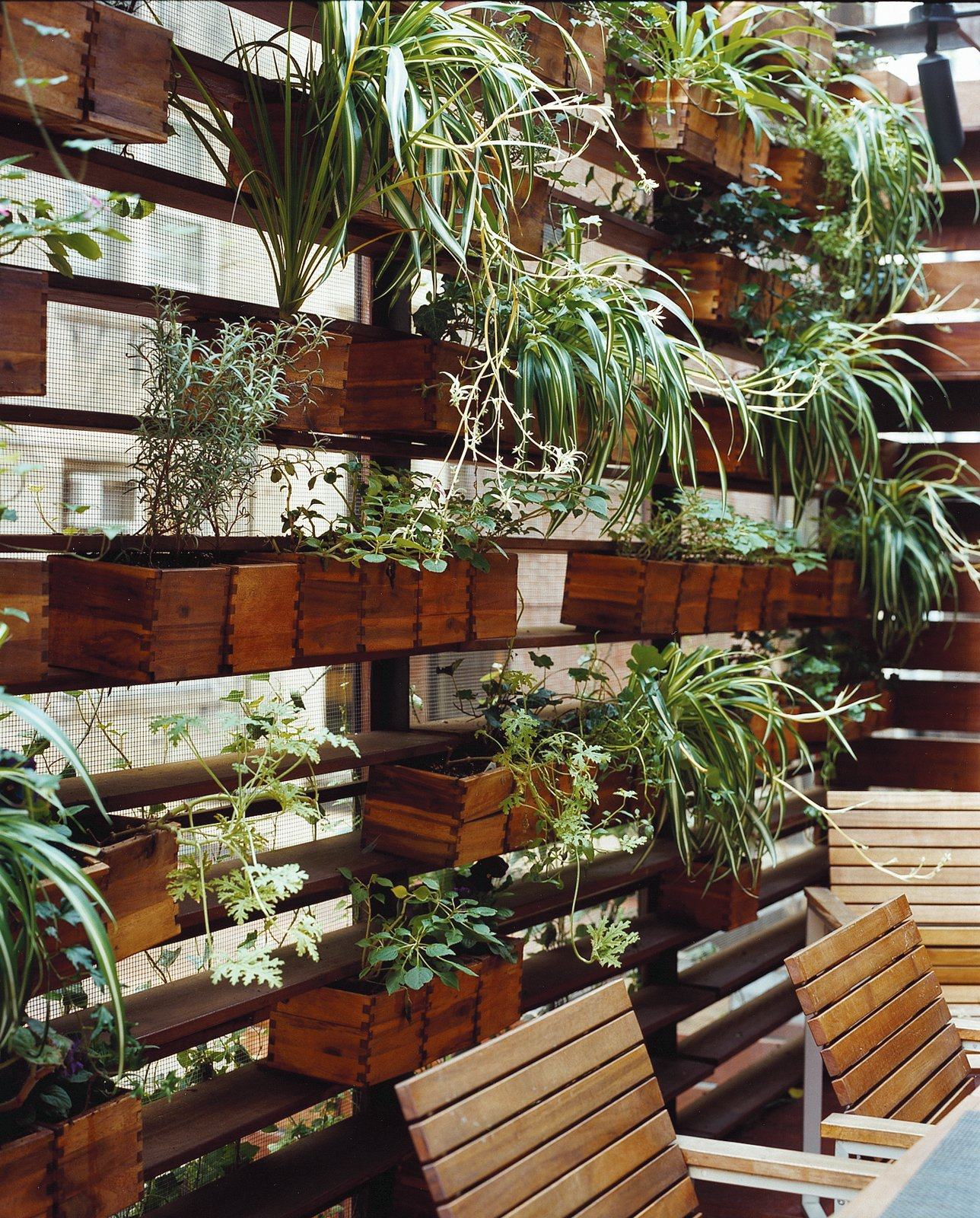 Boxes of herbs and spider plants adorn one side of the patio.  Photo 9 of 11 in Outdoor Living in NYC