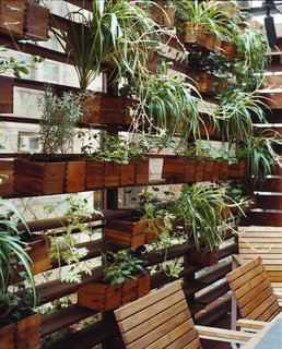 Boxes of herbs and spider plants line one side of the patio.