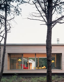 Viewed from the street, the house's kitchen/living area, raised on a platform with massive picture windows, resembles a stage. Banks and Lazar plan to enhance privacy by planting trees and shrubs.