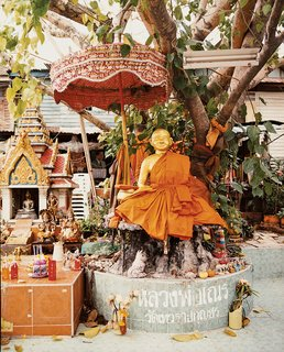 The Bangkok Beat - Photo 6 of 12 -