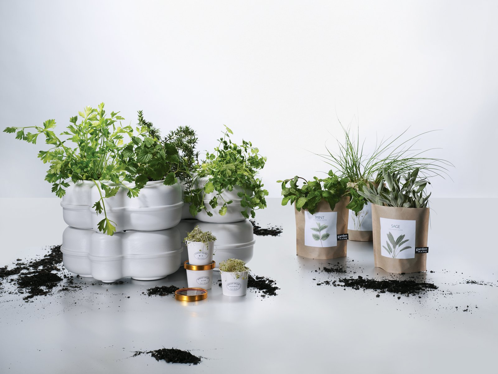 5 Simple Tips For Growing an Indoor Herb Garden - Dwell