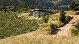 Native grasses, such as red fescue and California oat, dot the landscape surrounding the house.