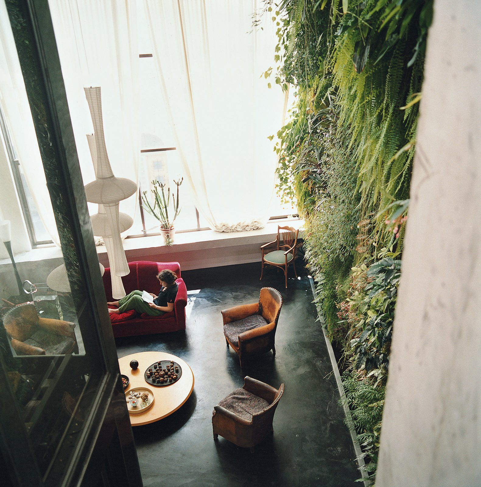 The Dimanches' indoor garden wall is 20-by-23 feet, dominating the living room with greenery.  Photo 4 of 7 in Garden Apartment