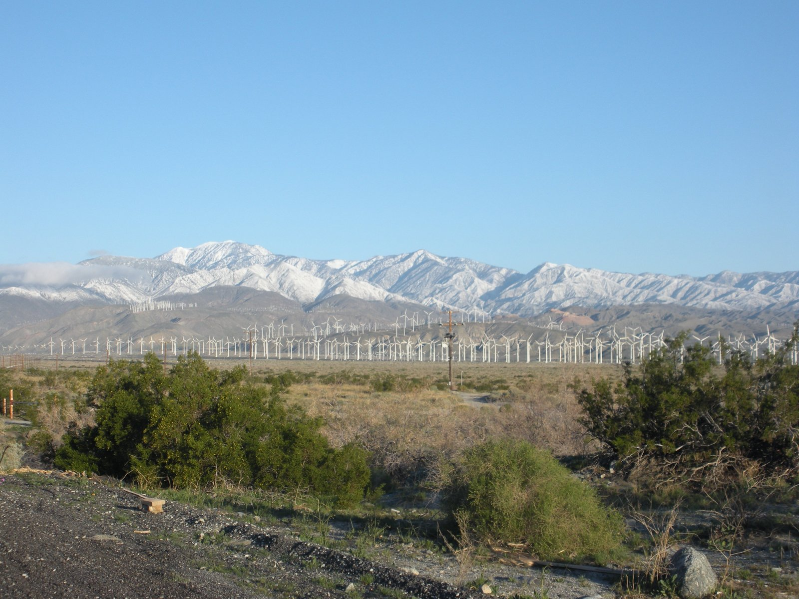 Wind turbines cover the landscape just north of Palm Springs.  Photo 5 of 7 in Palm Springs, California