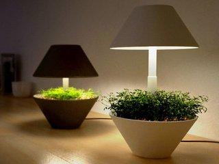 Lightpot by Studio Shulab - Photo 2 of 4 -