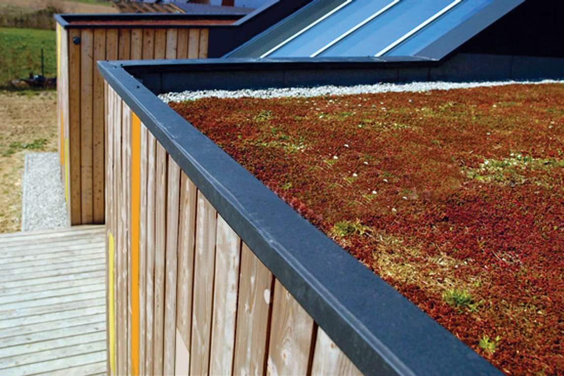 The garden-ready rooftop can provide additional insulation and soundproofing.  Photo 3 of 3 in Modern Efficiency and Affordability Don't Have to Come at the Expense of Style