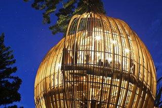Yellow Treehouse Restaurant - Photo 5 of 5 -