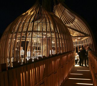 Yellow Treehouse Restaurant - Photo 3 of 5 -
