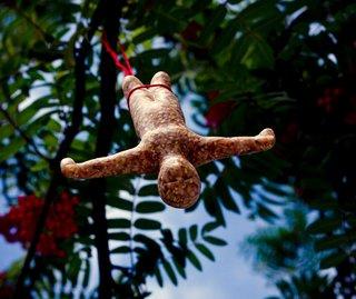 Bungee Bird Feeder - Photo 2 of 2 -