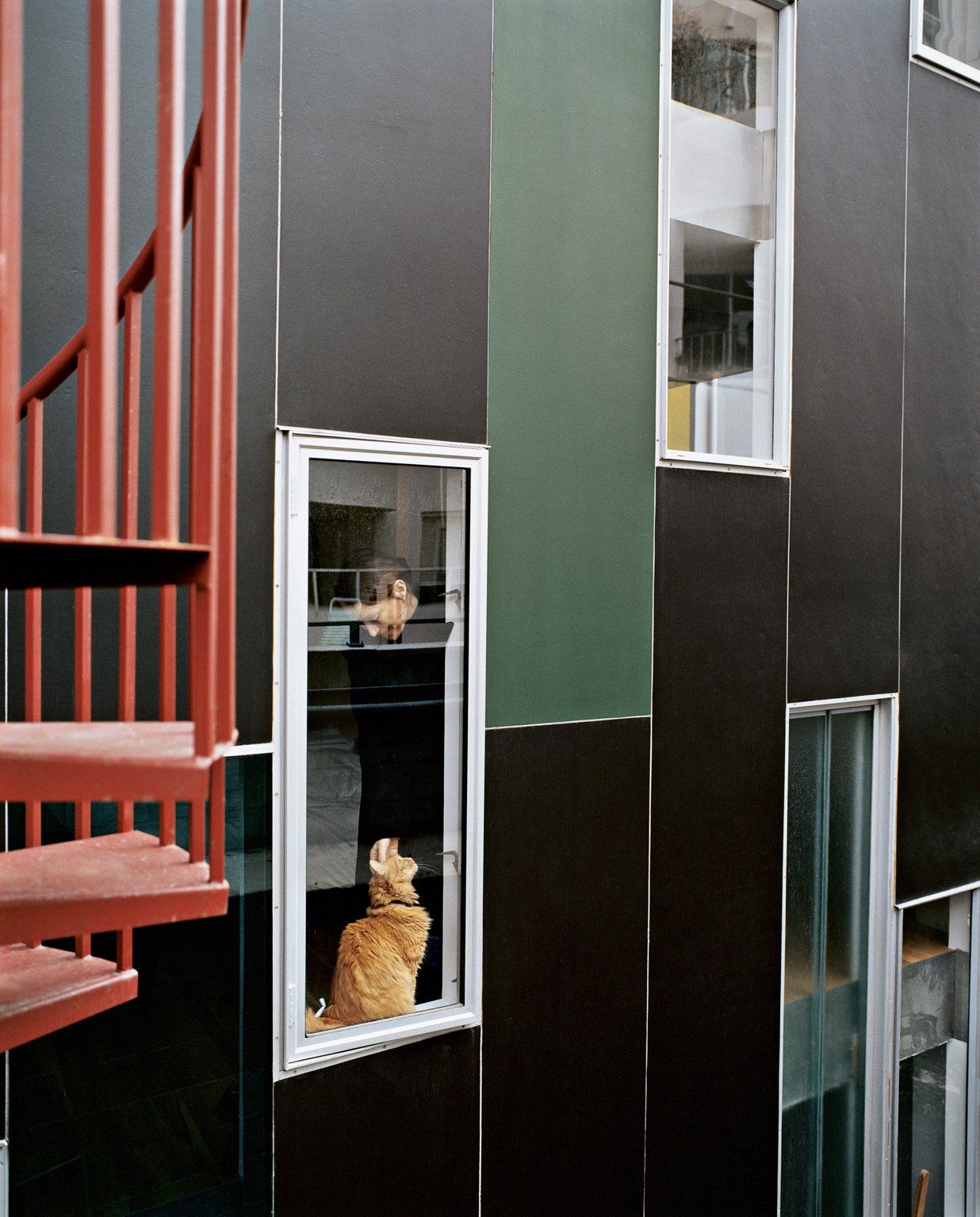 Exterior, Concrete Siding Material, and House Building Type Rich, dark concrete panels and colorfully dispersed windows wrap the exterior in varying permutations.  Photo 10 of 21 in 21 Cats Living in the Modern World from Kaleidoscopic Cabinet