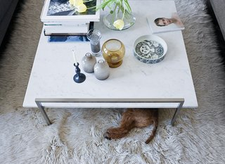 Leap Into the Year of the Dog With These 25 Pups in the Modern World - Photo 20 of 25 - The Skinny coffee table (perfect for unauthorized doggy dining) by Prospero Rasulo for Zanotta is also a display board for Jeanette's growing collection of Stig Lindberg and Bjorn Wiinblad ceramics.