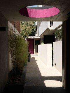 Ten Darling Apartment Buildings - Photo 4 of 15 -