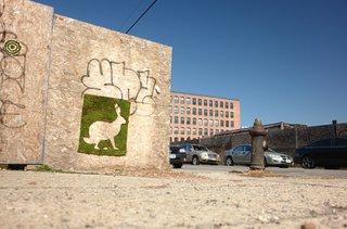 Unauthorized Moss Art - Photo 3 of 5 -