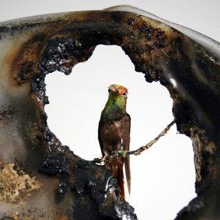 Detail of te hummingbird in Kelly McCallum's chair.