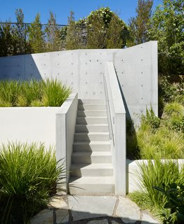 The entry and stairs to the tree house complex was sculpted from exposed, unpainted concrete, designed to suggest the ladder of a traditional tree house.