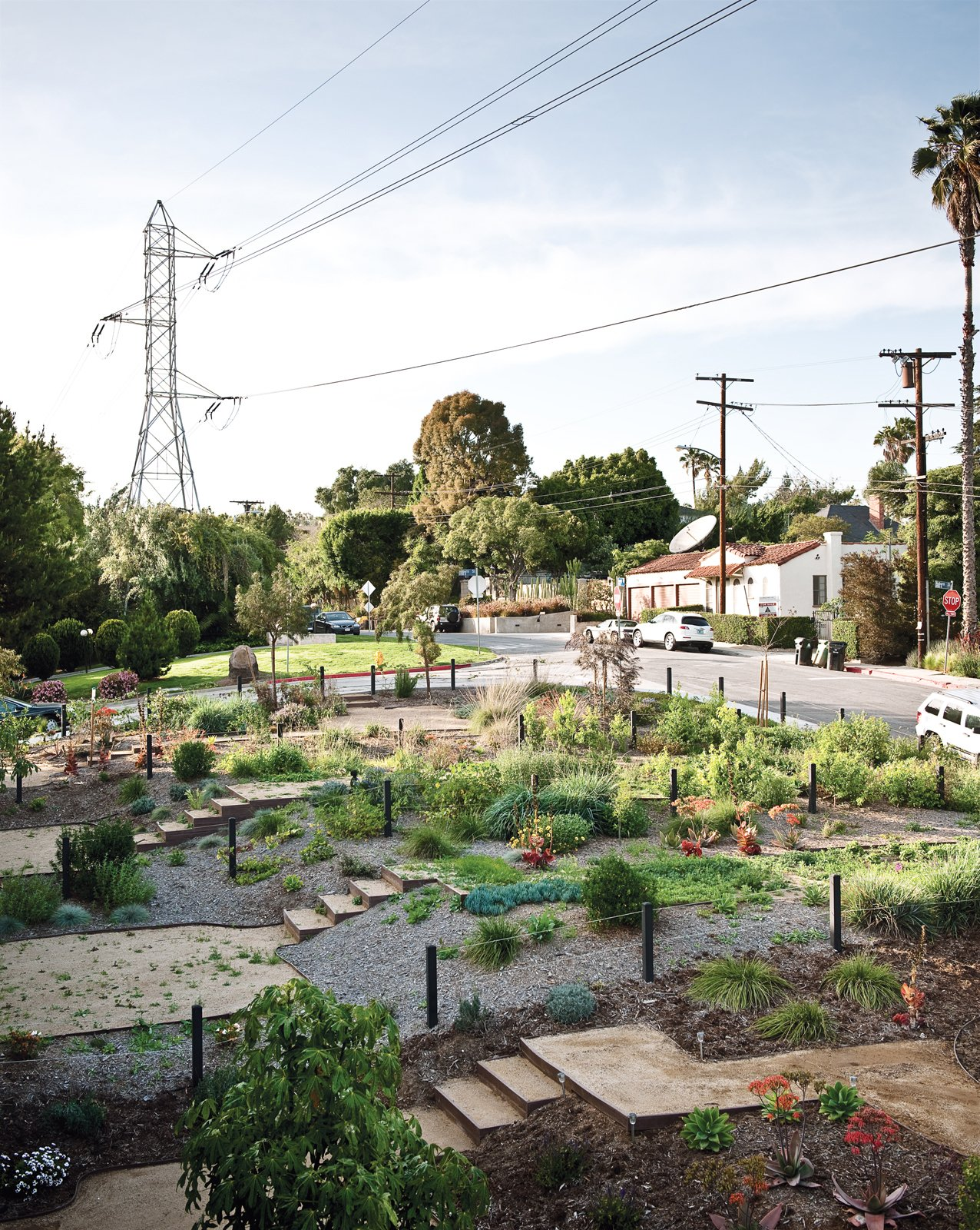 Residents have leased and transformed adjacent vacant land owned by the Department of Water and Power into a community garden.  Photo 6 of 15 in Lucky 7