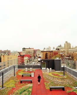 The Brook, a supportive housing building in the Bronx, occupies what had, for years, been a vacant lot. The green roof, pictured here, is one of a number of LEED-driven elements.