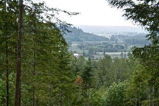 A huge component of our project was forestry and site development. The site as we purchased it was fairly neglected and needed a lot of TLC. Working closely with the county and foresters, we started to realize the potential for not only the view, but the entire site. This is a bit of a sneak peak into how the site opened over time. It was a slow and painstaking process, but well worth it.