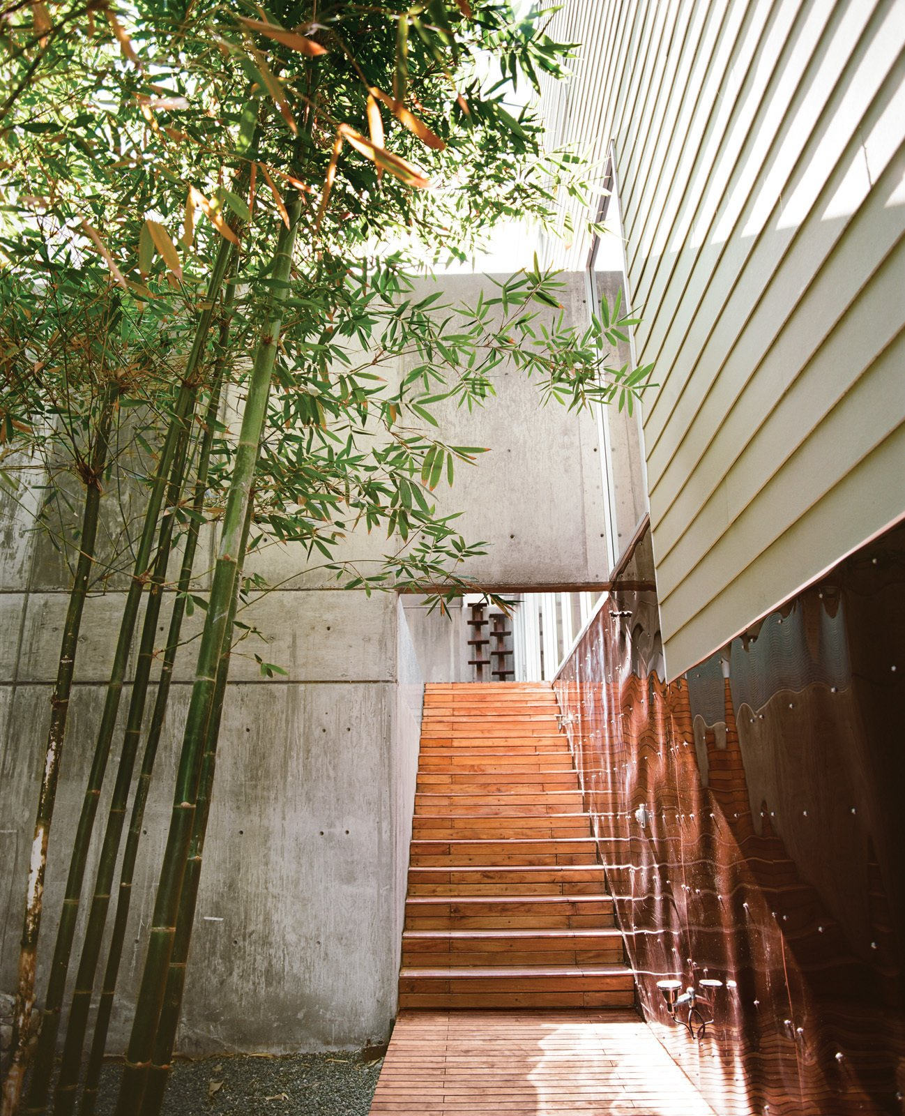 Staircase and Wood Tread The bamboo garden, home to Oscar the tortoise, abuts the walkway leading to the central courtyard.  Photo 2 of 13 in Modern in Tijuana