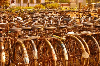 Motorcycles may rule city streets in India, but bicycles are everywhere, too.
