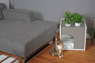 Designers Sebastian Haquet and Thomas Lanthier have a decidedly modern take on shelters for pets. Their Lille-based company, Pousse Creative, was founded in 2010 with a chicken run designed for suburban environments and quickly grew to encompass a complete line of modern dwellings for rabbits, cats, dogs, and birds.