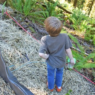 One of Jack's favorite activities has been visiting the site and collecting bugs and insects of all sorts. Here he checks out his options while standing at the slope's edge.