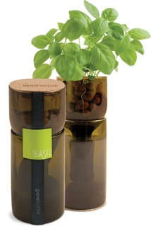 The Grow Bottles contain everything you need to grow a wine-bottle-size garden: pot, clay pebbles, seeds, and more.