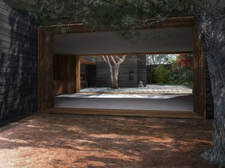 A view from the pine needle courtyard across the living and dining room to the main courtyard. The cropped tree on the right side of the image is the existing mature pine tree which was retained as a key design element.