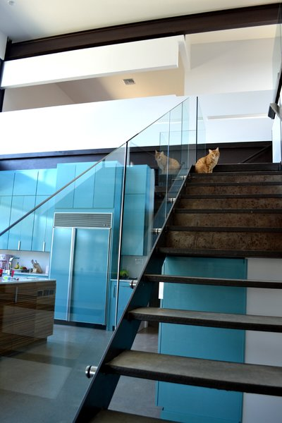 21 Cats Living in the Modern World - Photo 3 of 21 - The steel-framed stair with concrete treads and glass guardrail makes a nice perch for the family cat to take in views of the lake and check out what's cooking in the kitchen. Photo by J.C. Schmeil.