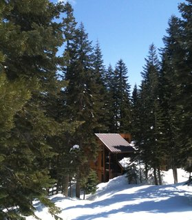Although not too far off the road, this home looks tucked away in its pine grove. The corrugated steel roof and vertically oriented windows keep this design from looking too much like a quintessential cabin.