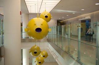 Public Art at Johns Hopkins - Photo 1 of 5 -
