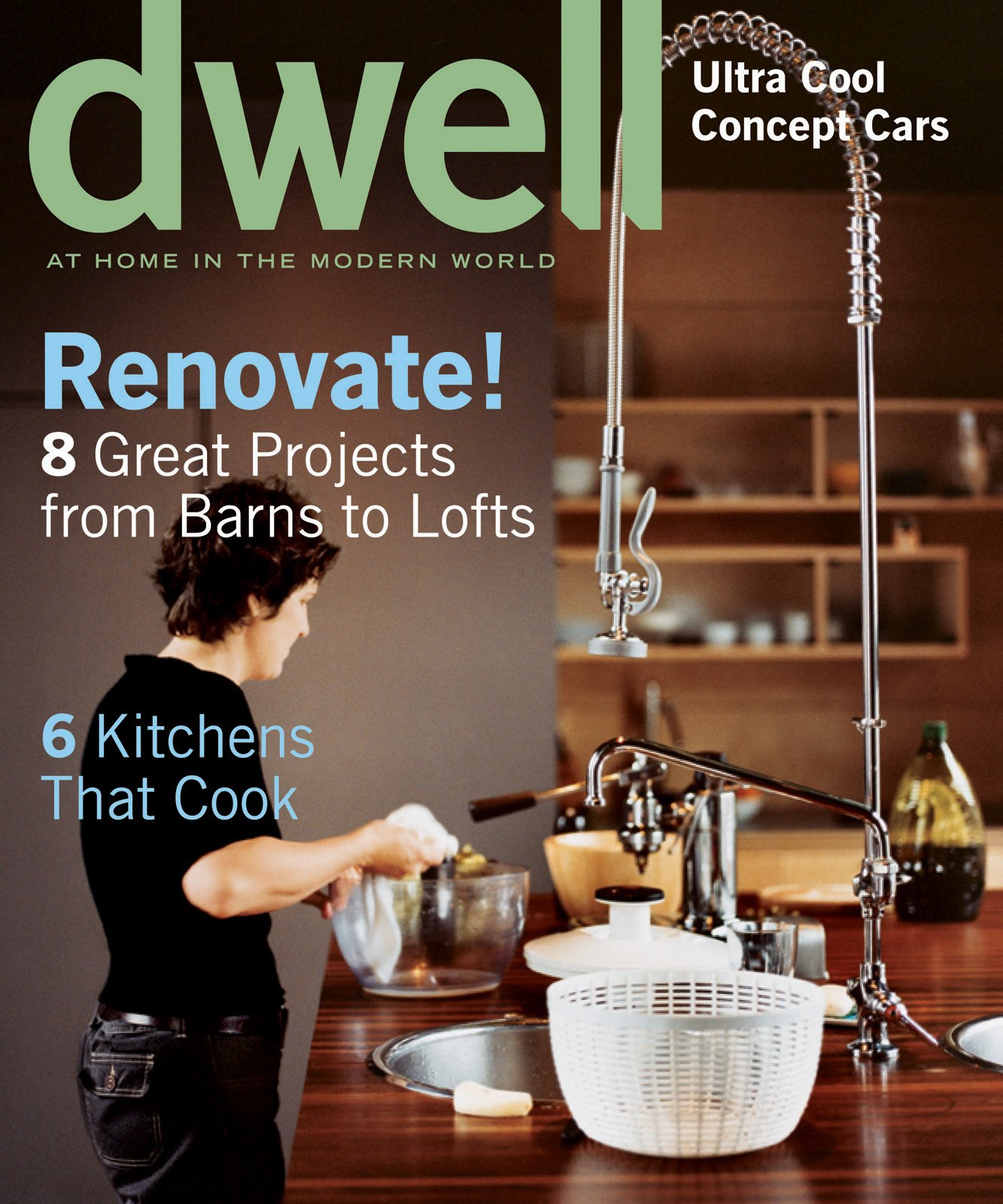 Dwell May 2003, Vol. 03 Issue 05: Renovate! by Dwell