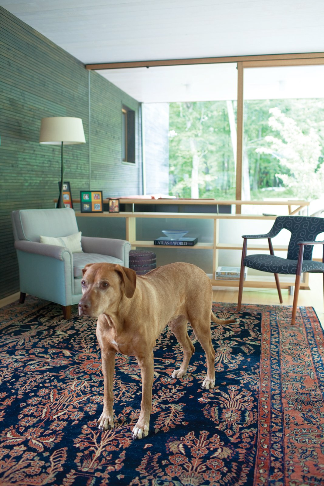 Living Room, Chair, Lamps, Medium Hardwood Floor, Rug Floor, and Bookcase Otto is a handsome complement to the Persian Sarouk rug and Gray's sophisticated interior design work.  Photo 6 of 25 in Leap Into the Year of the Dog With These 25 Pups in the Modern World from Gable-Roofed Rural Weekend Home in Connecticut