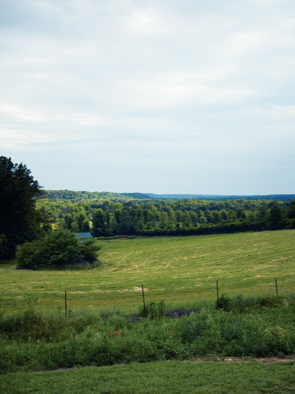 Outdoor, Field, Trees, and Grass The view from the bathroom.  Photo 7 of 10 in A Modern Farmhouse Recalls Old-Time Americana