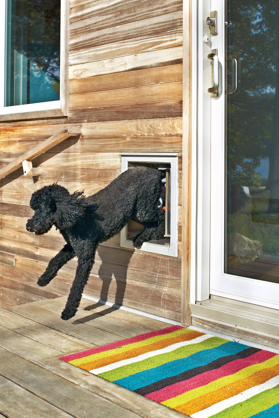 Doors, Metal, and Exterior Emergency Exit: A poodle-size dog door is a must for Max, who, as his owner reports, loves the lake house. Blake has also been known to eschew the sliding glass doors in favor of the smaller exit point.  andersenwindows.com  Photo 5 of 25 in Leap Into the Year of the Dog With These 25 Pups in the Modern World from Designers and Dogs: A Modern Love Story