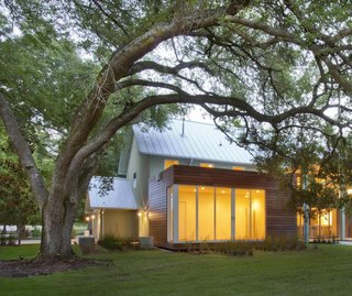 """Oak trees are a precious but delicate feature of southern landscapes. Their shallow roots extend far from their bases and are vulnerable to light foot traffic—and certainly to building foundations. The team at +one design & construction used a """"coil pile"""" foundation system—essentially made of corkscrew-like supports—that allows this guest room to harmlessly float over the roots of an 80-year-old tree."""