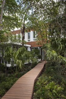 This Modern Miami House Feels Like It's in the Middle of the Jungle - Photo 2 of 12 - A wooden boardwalk twists through the verdant site.