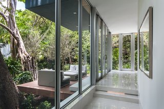 This Modern Miami House Feels Like It's in the Middle of the Jungle - Photo 4 of 12 - Thanks to floor-to-ceiling glass, the home feels like it's part of the landscape.