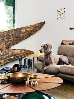 45 Pets in Beautiful Modern Homes - Photo 13 of 45 - In the living room, angel wings taken from a circa-1890s Parisian statue were discovered at Scott Landon Antiques in Vancouver. The vintage Petal coffee table, by Richard Schultz for Knoll, is topped with various brass and copper bowls found at secondhand stores, displayed alongside Form bowls by Tom Dixon.