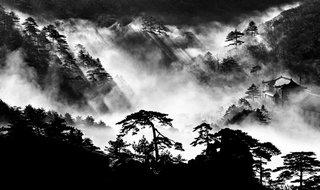 Celestial Seasons - Photo 2 of 9 -