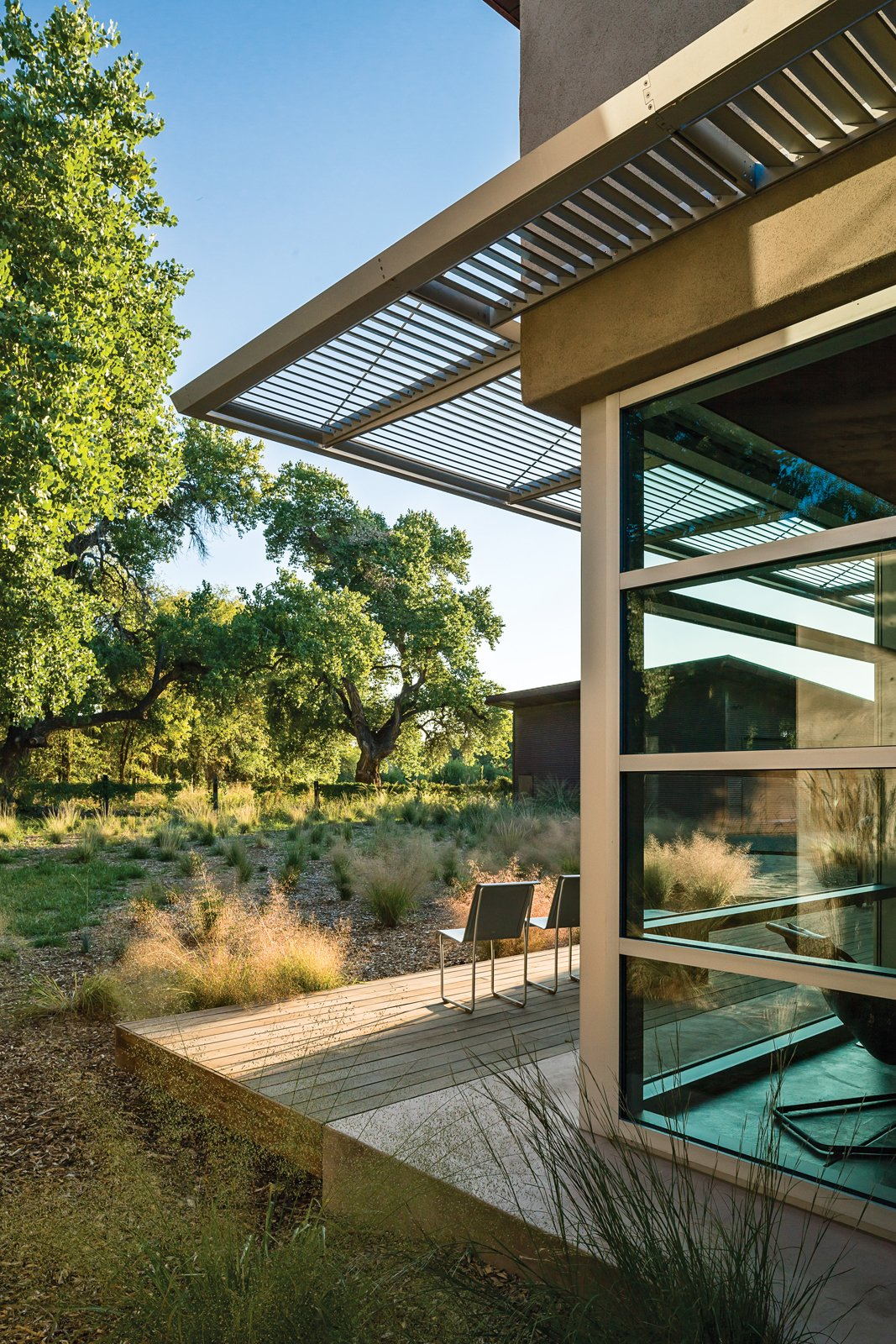 "Outdoor, Wood Patio, Porch, Deck, and Small Patio, Porch, Deck One major directive was to ""honor the tree,"" referring to a particular 85-year-old cottonwood on the property. Photo by: Kirk Gittings  Photo 1 of 5 in A Sustainable Rammed Earth Home in New Mexico"
