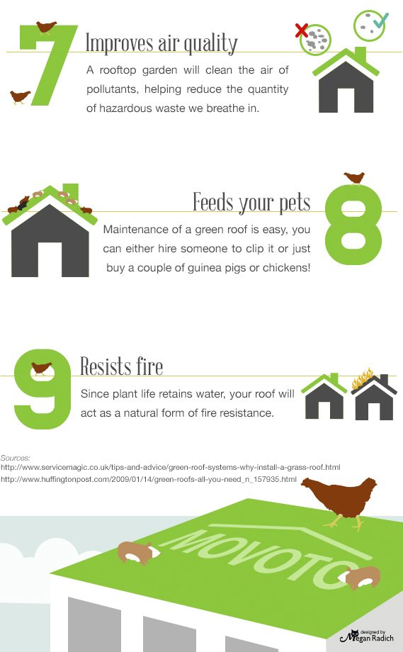Photo 2 of 7 in Plant a Green Roof: Feed 70 Chickens and Lower Your Bills