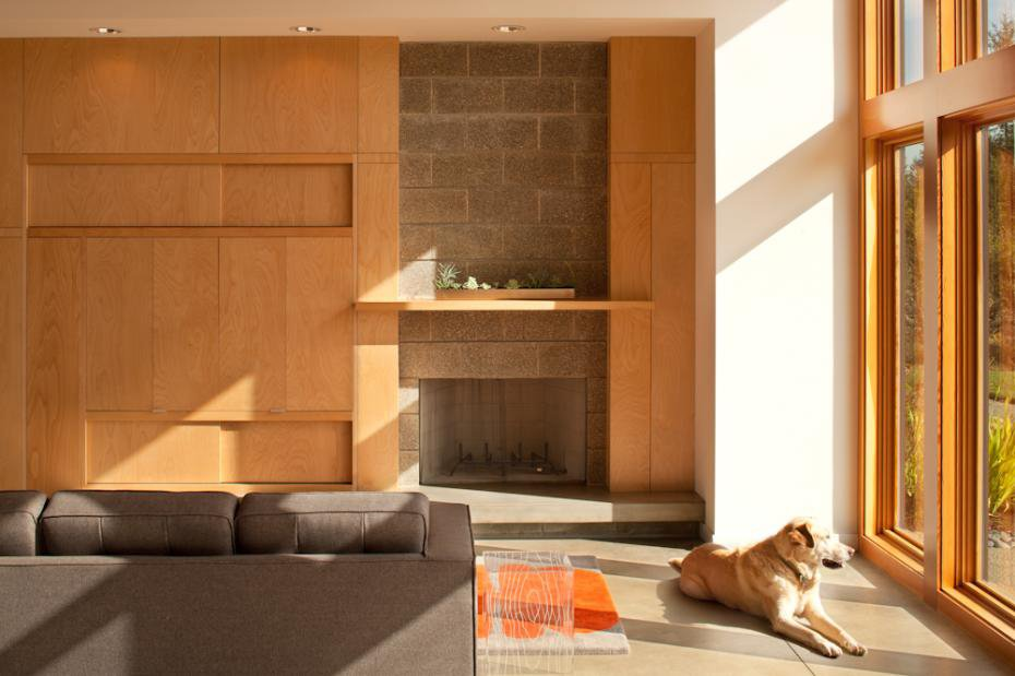 Sunlight bathes the interior of the house (and one of the couple's Labradors).  Photo 8 of 11 in Modern in the Country