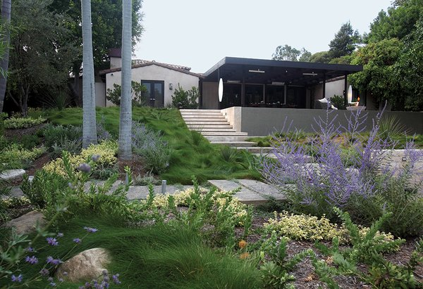 FormLA Landscaping principal Cassy Aoyagi integrates drought-resistant plants into her Southern California projects.