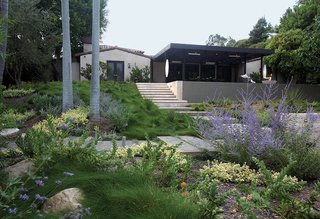 These drought-resistant, native plantings celebrate Southern California's local flora.